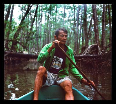 Лодочник лодочник филиппины мангровая река