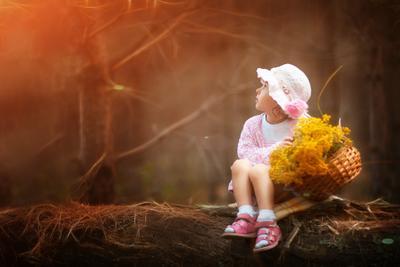 волшебный лес волшебный лес девочка мечтает сказочно корзиночка цветы