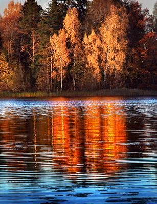 Осенним днем... Эстония Осень Oзеро Кавади