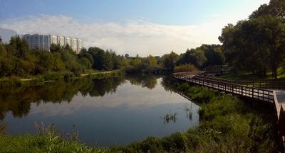 ***Московские пруды...