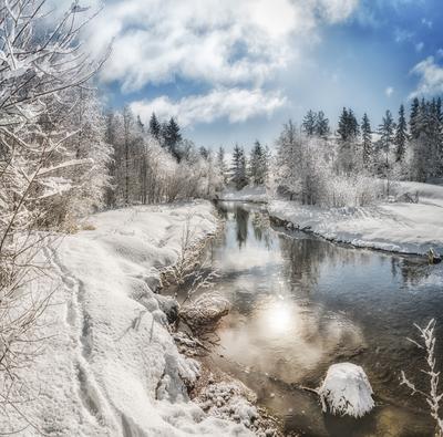 Прогулка по берегу речки Муж... Вологодчина природа весна