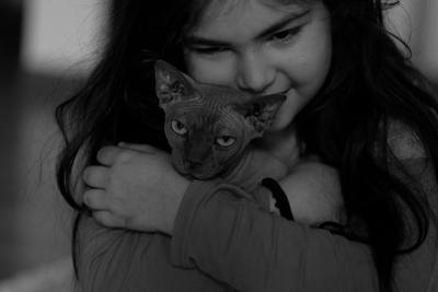 портрет кошки дочка кошка