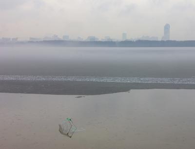 актуальный пейзаж город туман парк залив апрель