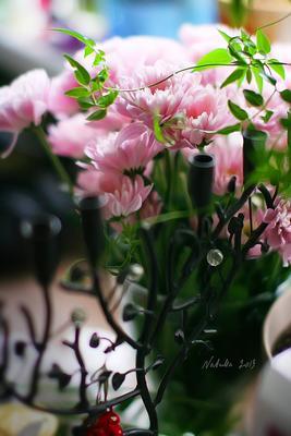 цветы на Пасху natella, natellam