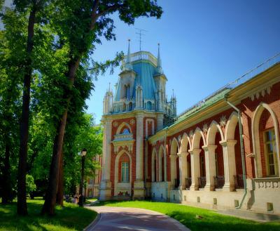 Москва . Царицыно , Июнь