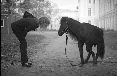 *** хромая лошадь bw ilford praktica