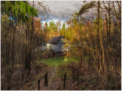 Домик в лесу Дом облака лесные истории сельские зарисовки