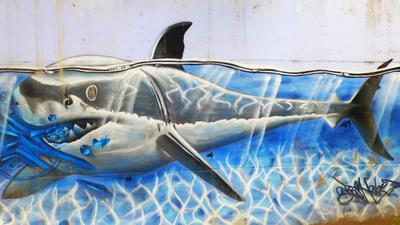 Street Art Le requin tag