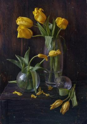 жёлтые тюльпаны*