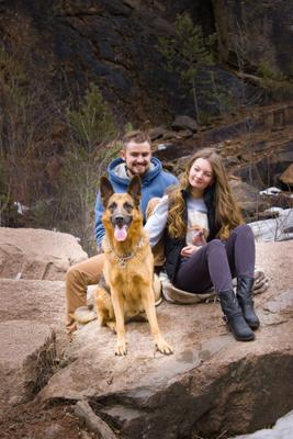 Собака-друг человека Портрет пейзаж природа лес горы