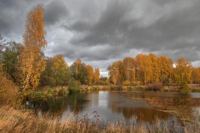 Тревожное озеро Озеро лес трава осень облака отражения лето глубинка Россия