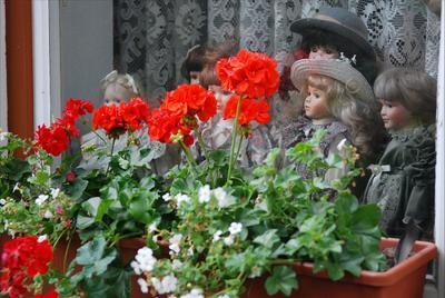 За витриной красивой жизни марионетки puppets