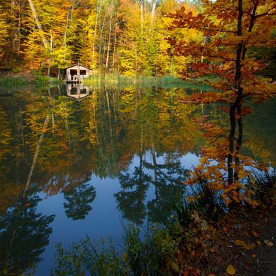 Осенний мотив. осень пейзаж отражение озеро