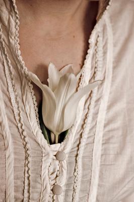 Одинокий тюльпан тюльпан цветок