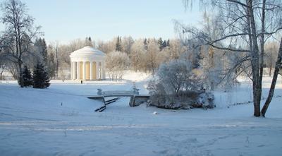 Морозный день Павловский парк зима речка лес