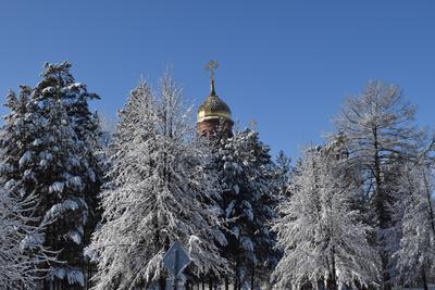 Церковь зима снег природа лес деревья пейзаж церковь
