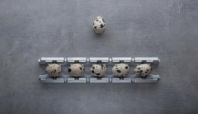 Go beyond ! Натюрморт арт-фото концептуальное яйца металл