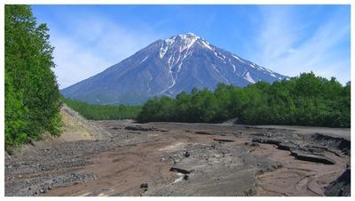 Корякский с Камчатки камчатка корякский вулкан