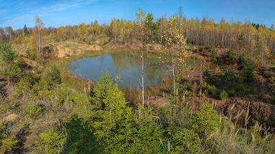 Ясный день осень природа пейзаж Россия небо озеро лес