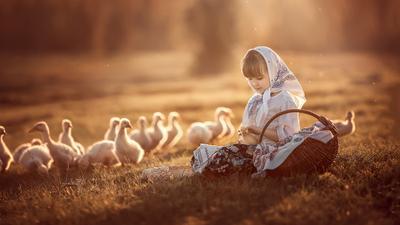 *** девочка утки гуси закат деревня