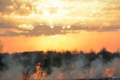Огненный закат Закат пожар огонь