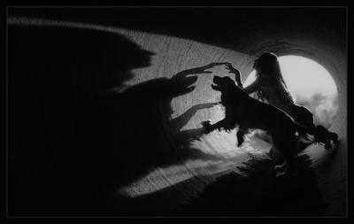 Shadow communication...