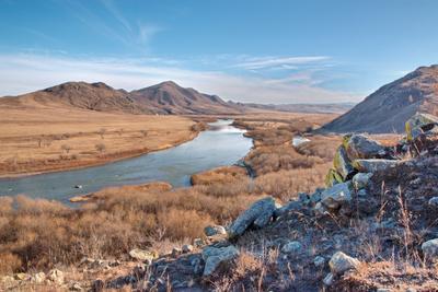 Течет река между сопок... сопки река Орхон пейзаж Монголия кусты берега