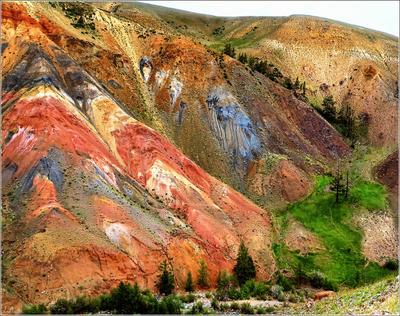 *Невероятная природная палитра* фотография путешествия горы Алтай Марс-2 природа лето Фото.Сайт Светлана Мамакина Lihgra Adventure