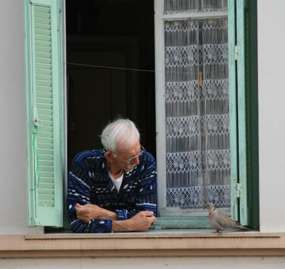 ***Позавтракаем? голубь старик Антиб