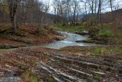 В ноябре речка лес осень