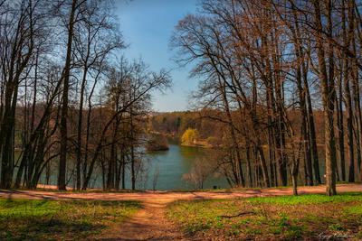 Апрельский парк Царицыно апрель парк