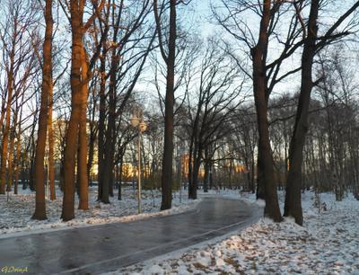 ***Прогулка по ледяным дорожкам