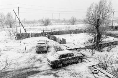 Черно-белая весна...