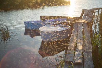 Мошкара у озера Озеро природа лодки вода свет
