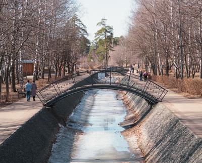 Парк Весна пейзаж природа деревья парк