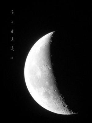 кусочек сыра луна