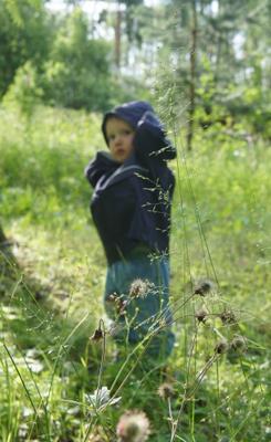 В лесу лес лето ребенок трава зелень