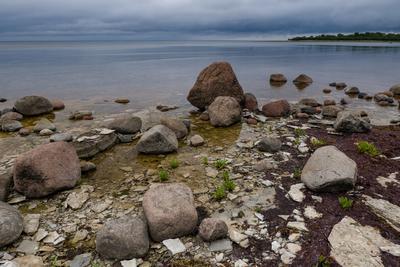 Хмурый день на Балтике II Бальтика Саарема камни небо вода