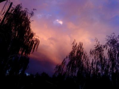 В поисках утраченного закат, филетовый, лиловый, небо, облака, деревья