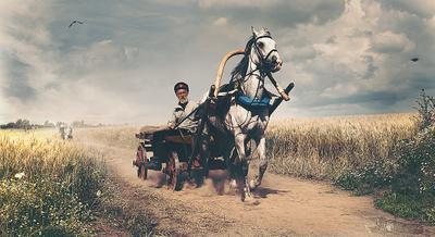 Казак Казак дорога хлеб поле лето подвода конь телега