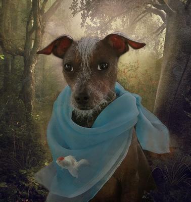 *** Ося в сказочном лесу комп.искусство,Мексиканская лысая Ксоло
