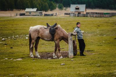 Можно передохнуть лошадь мальчик портрет жанр байкал canon samyang