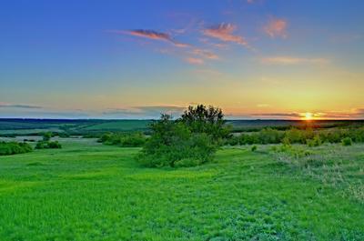 *** пейзаж степь поле закат