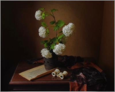 """..... """"Белый цвет""""..... предметы свет идея гармония композиция"""