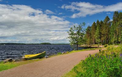 Озерный край. Холодное лето (3) холодное_лето_2015 яркий_день сосны березы озеро Сайма Saimaa Finland