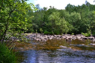 река Никишиха, Забайкалье реки сибири Забайкалье природа Забайкалья