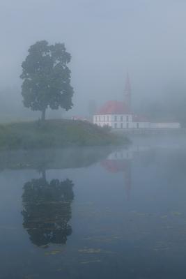 Гатчина: Приоратский дворец Гатчина Приоратский дворец парк утро туман