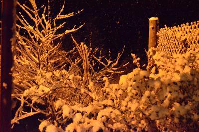 Зима снег зима снегопад красота