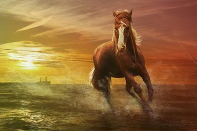 Rembrant Race Digital Photo Art Horses Eltons Fantasies