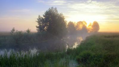 Рассвет на реке Волчья пейзаж природа туман река волчья